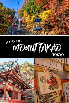 All the options to see and do on a day trip to Mount Takao in Tokyo, Japan. #Tokyo #Japan #MountTakao