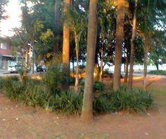 CAMPINAS - SP - DOMINGO, 05 DE MAIO DE 2013