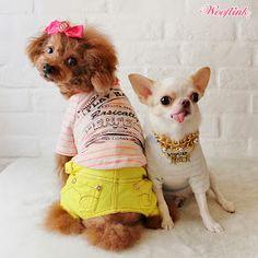 WOOFLINK - Hip designer dog clothes: BASICALLY PERFECT ♥