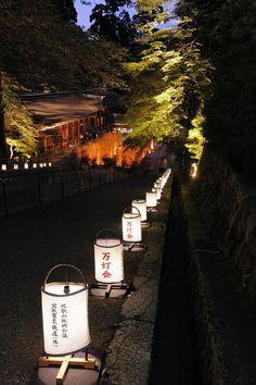 お盆休み初日の夜に行って来ました、京都と滋賀県の県境にあります比叡山延暦寺で行われておりました「法灯花」を。延暦寺の根本中堂のライトアップです。1.琵琶湖を見下...