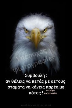Think Big, Greek Quotes, True Words, Movie Quotes, Strong Women, Life Is Good, Quotations, Psychology, Mindfulness