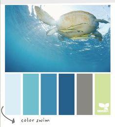Coastal and Beach Colors.  Beach themed bathroom. :)