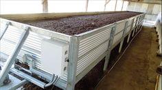 Solucan gübresi üretimine standart geliyor! - Ekonomi Haberleri - MİLLİYET Farm Tools, Garden Tools, Garden Ideas, Hydroponic Gardening, Hydroponics, Black Soldier Fly, Red Wigglers, Red Worms, City Farm