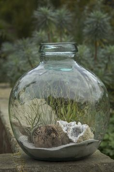 Terrarium with Tillandsia and Geodes | Flickr - Photo Sharing!