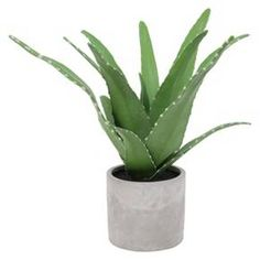 Artificial Potted Aloe Plant - Threshold™ : Target
