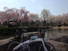 ©芯さま / Mu P8 カスタム 2010年 / 那須塩原市、那珂川河畔公園にて。カスタムを続けた結果、フレームの色まで変わっちゃいました(笑)なので、Muのデカールは自作です。
