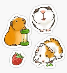 """Guinea Pig set Stickers by pawlove Anime Stickers, Kawaii Stickers, Cute Stickers, Cartoon Drawings, Easy Drawings, Animal Drawings, Guinnea Pig, Homemade Stickers, Pig Crafts"