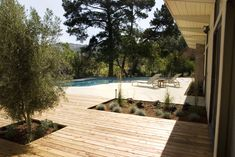 Mid Century Modern- Garden Rehab - modern - Landscape - San Francisco - Integrated Design Studio, Inc. Modern Deck, Modern Pools, Modern Backyard, Small Backyard Landscaping, Mid-century Modern, Landscaping Ideas, Backyard Ideas, Modern Garden Design, Landscape Design