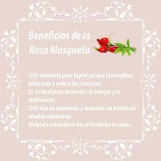 Cuidado Personal:  Esta semana les compartimos los beneficios para nuestro cuerpo que nos aporta la rosa mosqueta. ¡Disfruten!