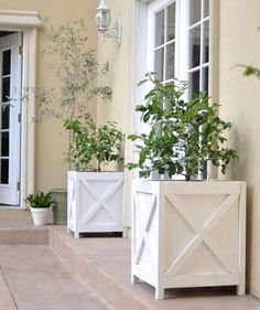 """Traditional Planters, by Kate of Centsational Girl 
