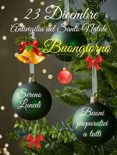 Christmas Bulbs, Lily, Holiday Decor, Party, Christmas Light Bulbs, Lilies