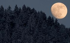 via Milky way scientists -  The moon rises behind snow covered trees near Garmisch-Partenkirchen, Germany, on February 5, 2012. (Johannes Eisele/AFP/Getty Images)