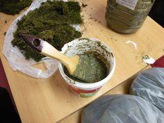recipe for moss graffiti