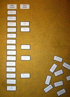 Psicogrammatica Montessori: nomi comuni e nomi propri. Presentazioni ed esercizi per bambini della scuola primaria, coi cartellini pronti...