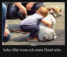 Jedes Mal wenn ich einen Hund sehe.. | Lustige Bilder, Sprüche, Witze, echt lustig
