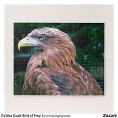 Golden Eagle Bird of Prey. Jigsaw Puzzle