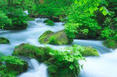 Oirase Stream 3 by Isogawyi, via Flickr