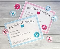 Free printable cat adoption kits at Chickabug.com