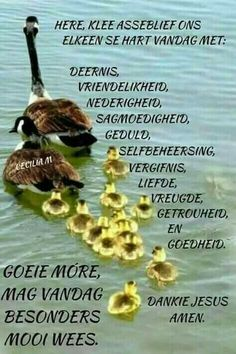 Evening Greetings, Angel Prayers, Goeie More, Afrikaans Quotes, Special Quotes, Good Morning Wishes, Deep Thoughts, Bible Quotes, Amen