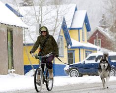 Crested Butte (ski + mountain bike + walk dogs + dwell in cottage)...  For more info on vacation rentals and our GREAT DISCOUNTS on ski rentals and tickets in CRESTED BUTTE and ASPEN, COLORADO, visit http://www.greatcrestedbuttelodging.com/