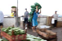 Carregadores#Amazonia#Brasil#Amazonas#Manaus#LulaSampaio#Mercado