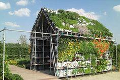 Great idea! Eatable home!