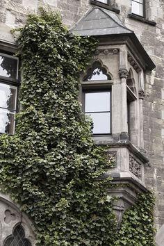 Magdeburg gothic architecture Gothic Architecture, Sri Lanka, Travel Photos, Fotografia, Magdeburg, Travel Pictures