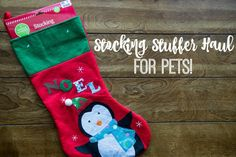 Big Lots Stocking Stuffer Haul For Pets. Everything for this haul was purchased at @biglots . #BIGDeal [ad]