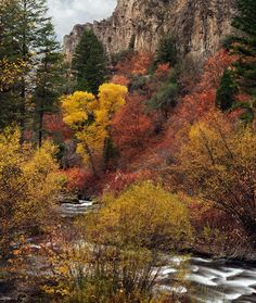 ✯ Palisades Creek Canyon in autumn in the Snake River Mountains - Idaho