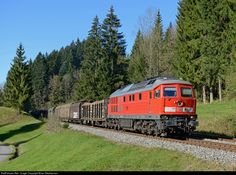 Net Photo: 233 DB Schenker BR 233 at Algau bahn, Germany by Brian Stephenson Diesel Locomotive, By Train, Rotterdam, Places To Visit, Germany, Adventure, World, Europe, Countries
