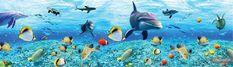 Underwater Wallpaper, San, Fish, Pets, Outdoor Decor, Painting, Animals, Animales, Animaux