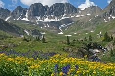 American Basin near Lake City, Colorado