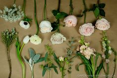 First Row: Queen Anne's Lace, Anemones, Ranunculus, White Ohara Garden Roses, Quicksand Roses,  Juliet Garden Roses, Keira Garden Roses and Emely Roses. Second Row: Brunia, tulips, dusty miller, seeded eucalyptus, Jana mini roses,  guni eucalyptus, stocks, and larkspur: