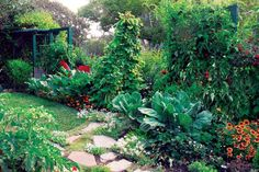 Grow 700 lbs of veggies on a small plot