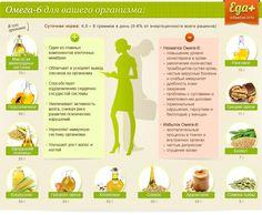 Компоненты питания – 16 фотографий | ВКонтакте