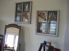 window pane picture frame, shabby adorable, window pane picture frames...dont mind the glare, its a sunny day!!, Home Decor Project