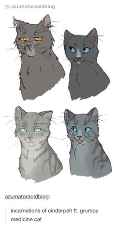 Incarnations of Cinderpelt ft. grumpy medicine cat<<< I REALLY REALLY LOVE THIS OKAY