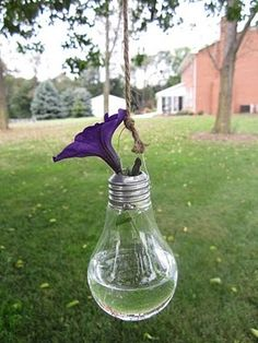 lightbulb vases - or votives?