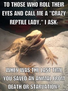 Shoutout to all the reptile rescuers!