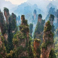 Zhangjiajie National Forest Park China | Photo via @ourlonelyplanet by awesome_globepix