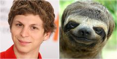 Who Wore it Better: Celebrities or Animals? http://tipsycat.com/2015/10/who-wore-it-better-celebrities-or-animals/