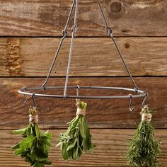 herb drying rack from Williams Sonoma.  A less expensive alternative would be an old lampshade form and hooks from Ikea or your local restaurant store.