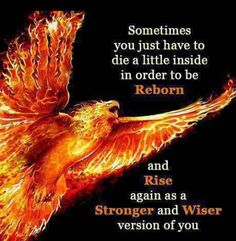 Phoenix rising from the ashes. Rebirth Renewal Regrowth