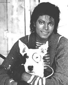 Michael Jackson and Bull Terrier