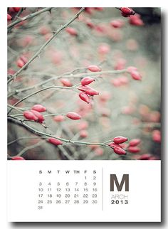 I like the simiplicity of this calendar, this image takes up the majority of the page , meaning people can cut off the dates and keep the Images. The ony this is there needs to be a way to highlight key dates.