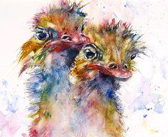 aquarel emoes of struisvogels, Gerard Hendriks, bron aquarelacademie