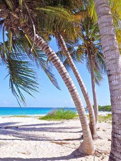 """Blue Beach"" at Vieques Island (Puerto Rico)  Photo: Joe Lovotti"