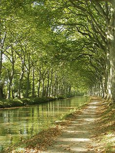 French Fusion Travel: barging on the Canal du Midi, Languedoc region, France Landscape Photography, Nature Photography, Canal Du Midi, Belle France, Parcs, South Of France, France Travel, Beautiful Landscapes, Wonders Of The World