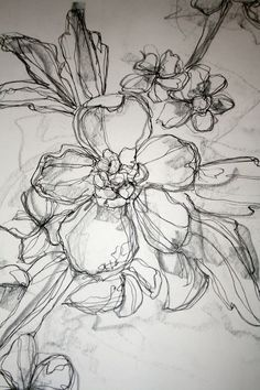 Rose ink drawing