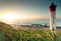 A guide to the best beach beaches on Durban's East Coast of South Africa Pretty Beach, Most Beautiful Beaches, Holiday Activities, Cn Tower, East Coast, South Africa, Culture, Photography, Snow